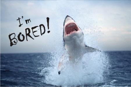 boring_shark